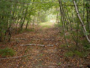 Brister Hill roads 21