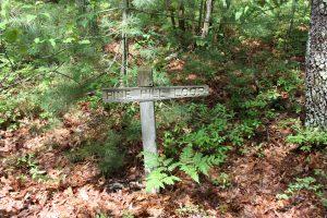 Pine Hill Loop
