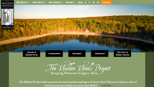 Image of WWP's new website