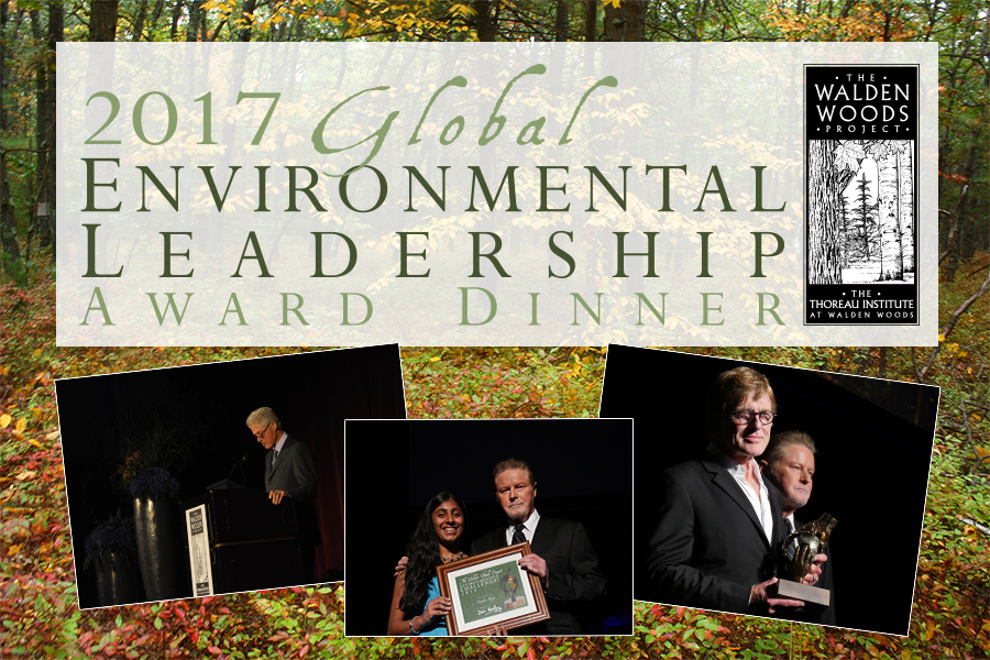 Global Environmental Leadership Award